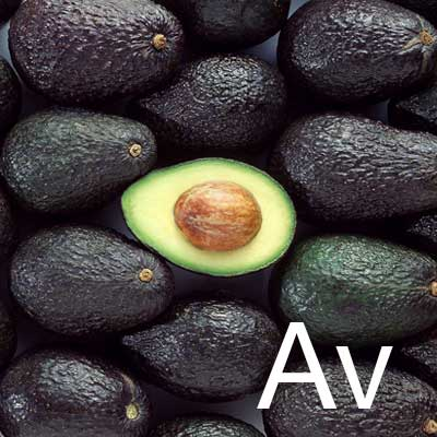 Avocado Butter (Hydrogenated Persea Gratissima Seed Oil) Ingredient Image