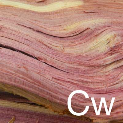 Cedarwood (Cedrus Atlantica Bark Extract) Ingredient Image