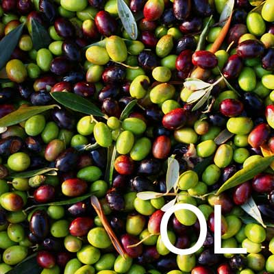 Olive Oil (Olea Europaea Fruit Oil) Ingredient Image