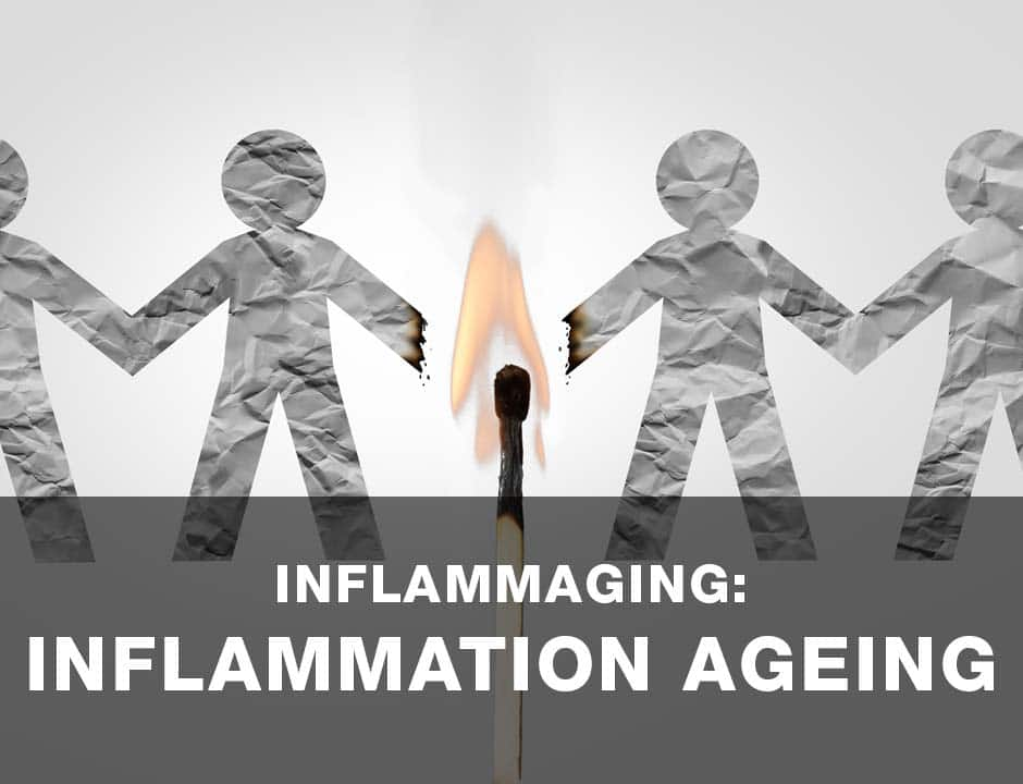 R10 Labs Inflammaging Inflammation Ageing