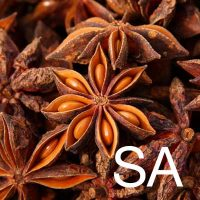 Star Anise (Illicium Verum Fruit Extract) Ingredient Image