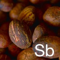 Shea Butter (Butyrospermum Parkii Butter) Ingredient Image