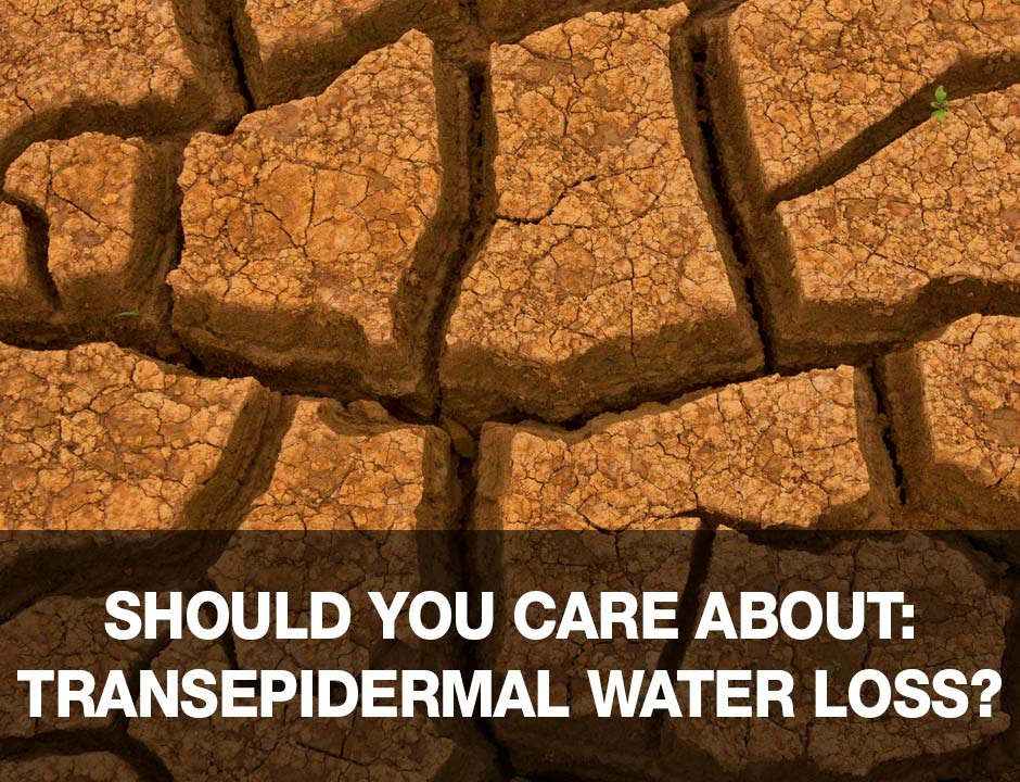 Should You Care About Transepidermal Water Loss in Skincare
