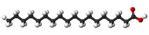 Stearic Acid Molecule